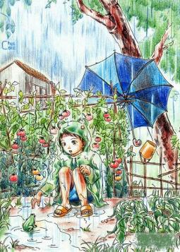 小男孩和青蛙  有关于夏天的画分享