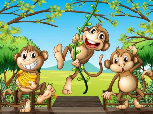 被释放的猴子