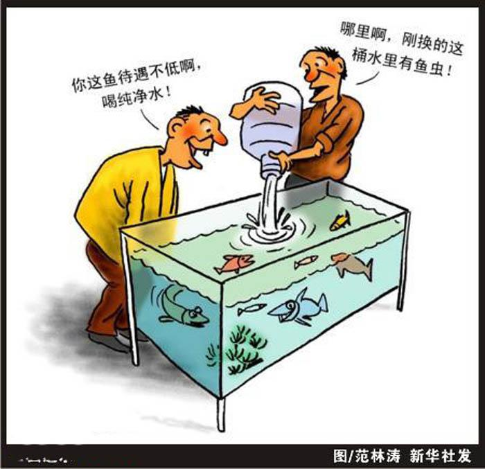 食品安全手抄报漫画,虫进水