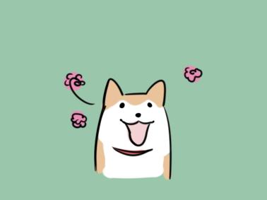 傻乎乎的柴犬简笔画要怎么画?小狗简笔画