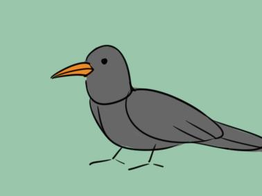 漆黑的乌鸦简笔画要怎么画?