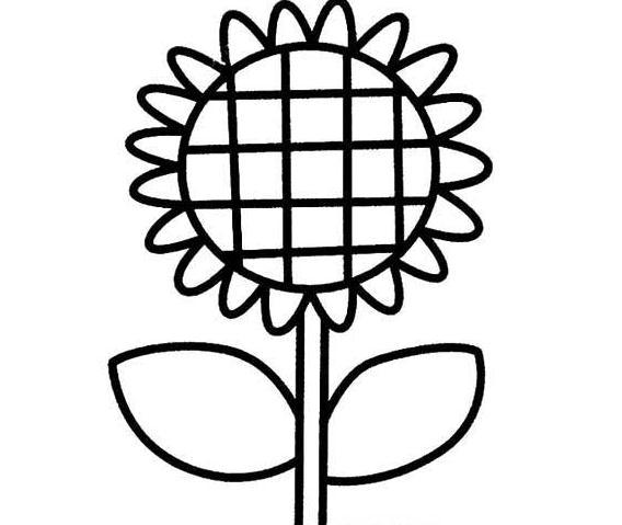 漂亮的太阳花简笔画 向日葵简笔画