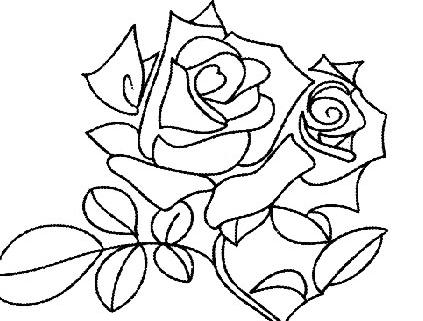 姿态万千的玫瑰花简笔画