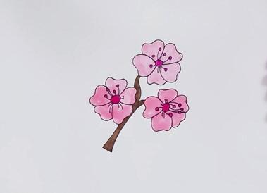 盛开的樱花简笔画步骤 花朵简笔画图片