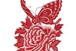 牡丹上的蝴蝶