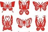 各种形状的美丽蝴蝶