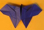 教你怎样去折翼尾蝶