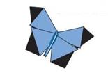 澳大利亚蝴蝶的折法